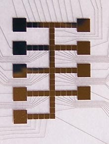 This microfluidics chip can be used to mix proteins, sugars, and enzymes just like the organelle of a human cell.