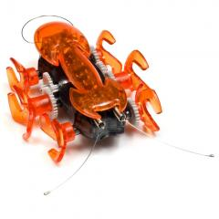 Hexbugs aim to scurry into your heart.