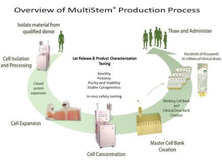 multi-stem process