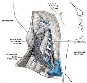 chronic cerebrospinal venous insufficiency