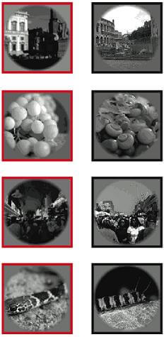 UCB-images-fmri-tests