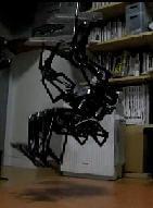 back-flip-robot
