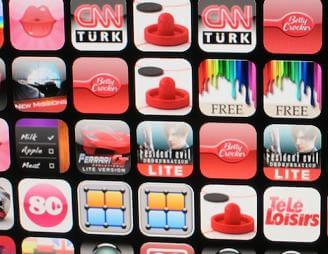 Apple-app-wall-2010-upclose