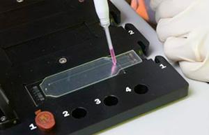 miniature-biosensors-LLMDA