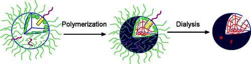 plastic-antibodies-3D