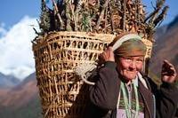 tibetan-genes-altitude