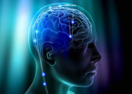 Brain regions 'tune' activity to enable attention