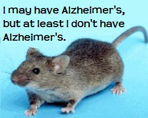 sirtuin-alzheimers-mouse