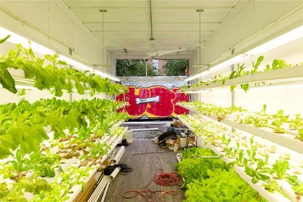 modified shipping container indoor garden nurseries
