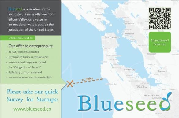 blueseed brochure