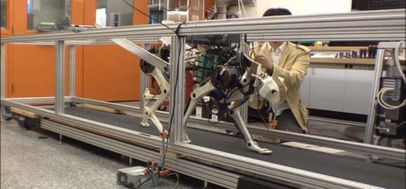 [Source: Biomimetics MIT via YouTube]