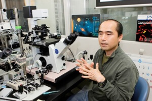 Dr. Teruhiko Wakayama and colleagues used an epigenetic inhibitor to improve cloning efficiency to an unprecedented level. [Source: RIKEN]