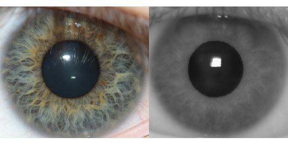 iris-scans