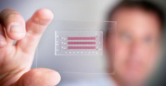 Microfluidic-chip-UBC