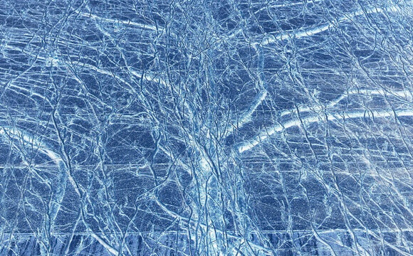 Researchers Record Young Neurons Making Connections, Exchanging Information