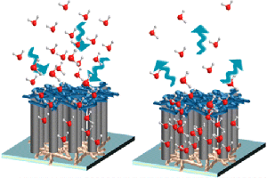 biomimicry, nanotechnology, technology, water, nanotubes