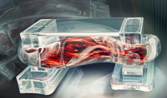 muscle-powered-3d-printed-bio-bots 1