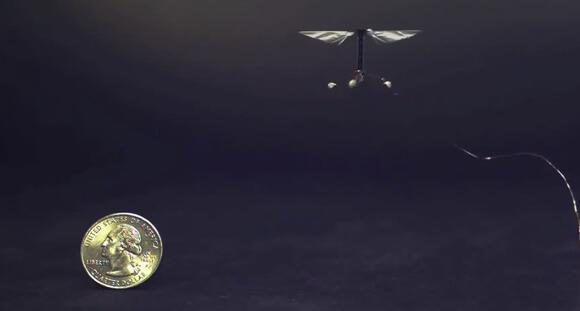 robotic-bee-size-of-quarter
