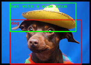 dog-wide-brim-hat-computer-vision