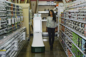 fellow-robots-lowes-bot-5