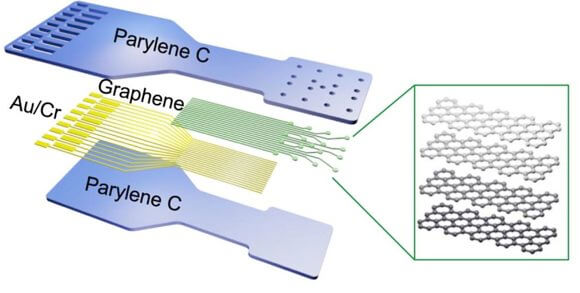 The graphene sensor array is placed on a flexible plastic backing that conforms to tissue.