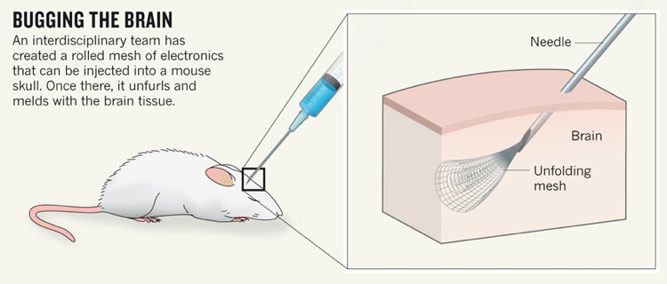injectable-neuro-mesh-electronics-2