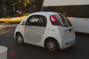 google-car-different-animal-1