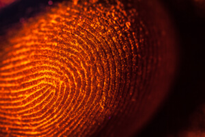 bank-biometrics-3