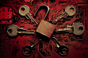 cyber-immunity-2