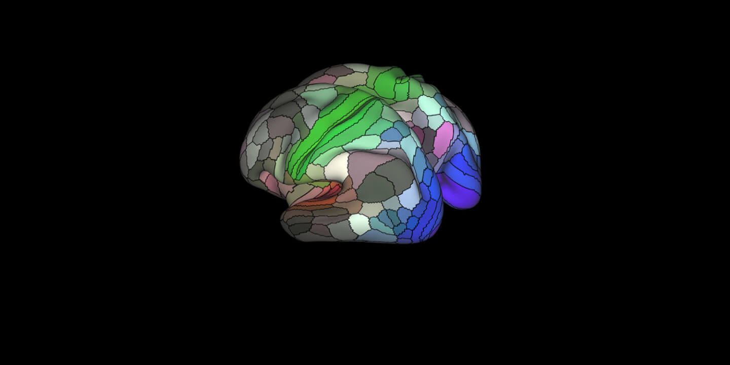 Scientists Complete The Most Detailed Map Of The Brain Ever