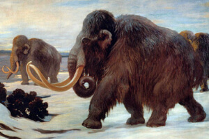 woolly_mammoths-1