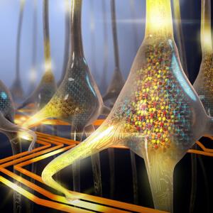 ibm-artificial-neuron-chip-3 (1)