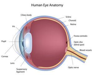 corneal-implant-2