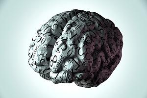 intelligence-brain-equation-fundamental-1