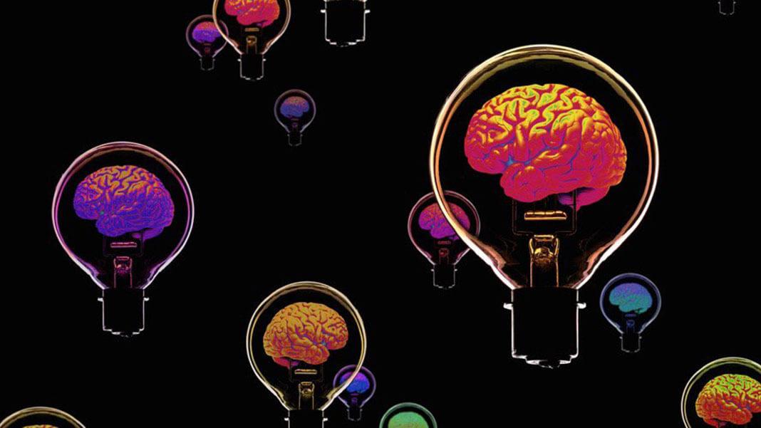 light-brain-bulbs