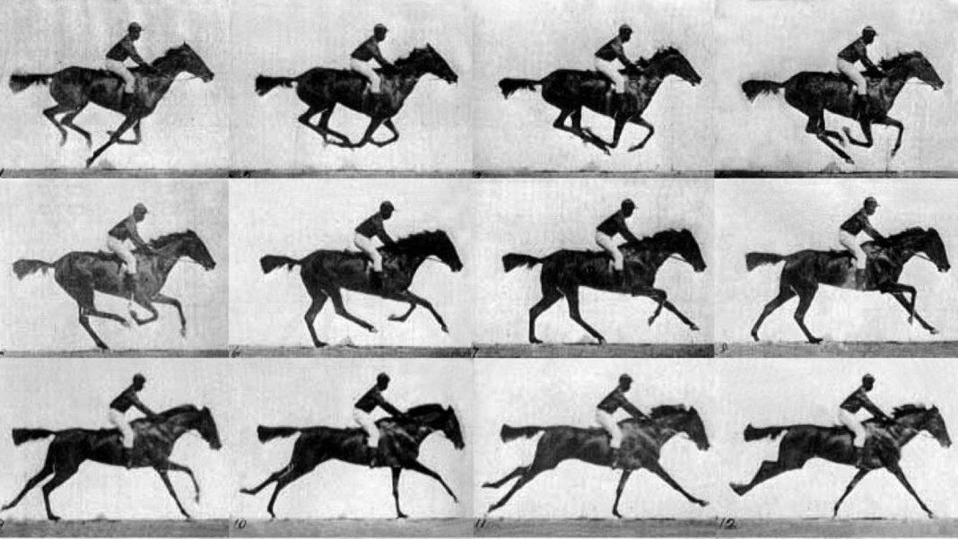 Muybridge-race-horse-gallop