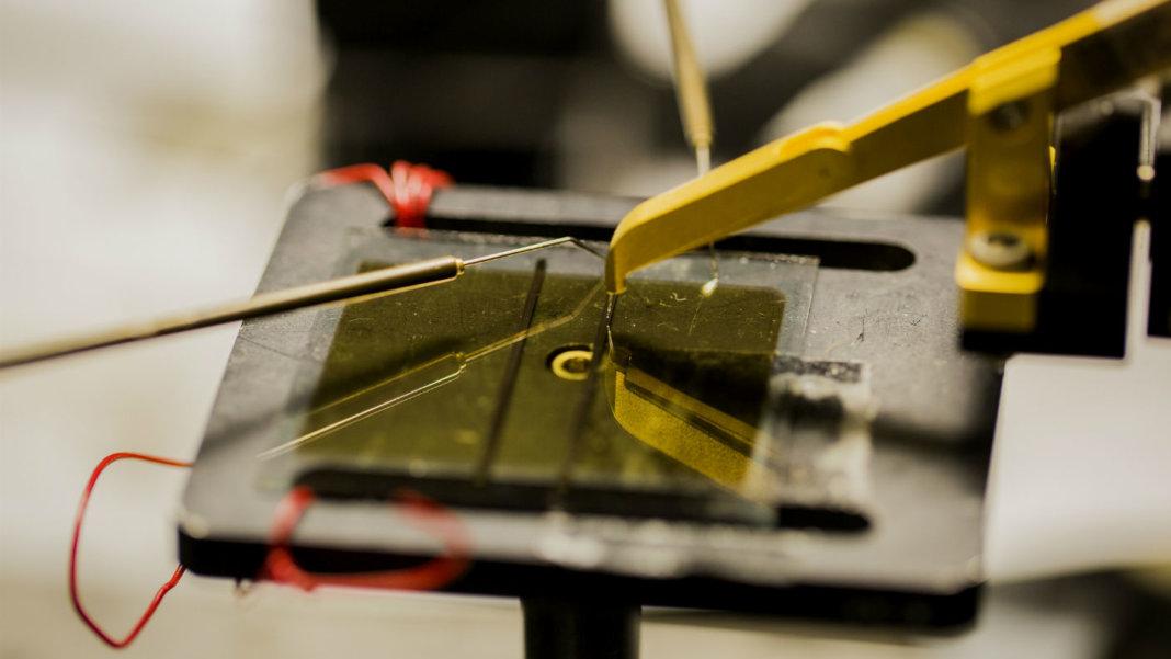 Michigan-Engineering-Organic-Solar-Cells