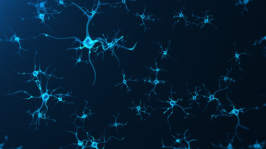 This Sensor Lets Scientists See Neuron-Level Brain Activity in ...