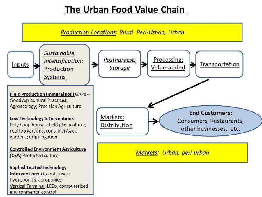 The Urban Food Value Chain Davies Garett