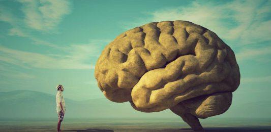 person and brain illustration