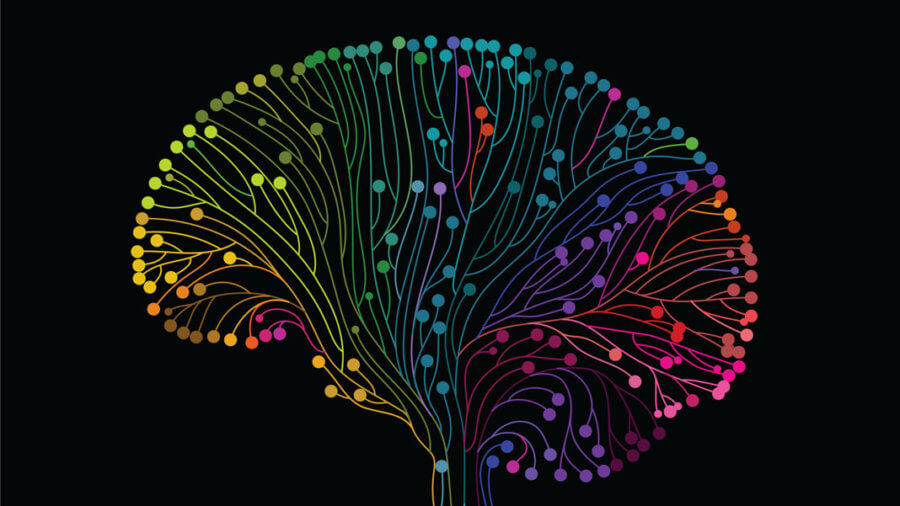 multicolored brain connections