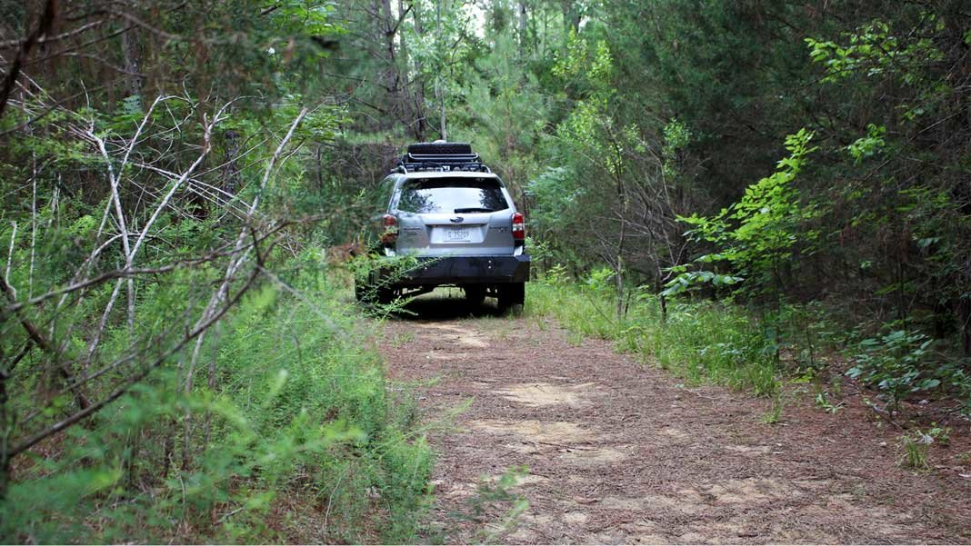 self driving car heads into the woods