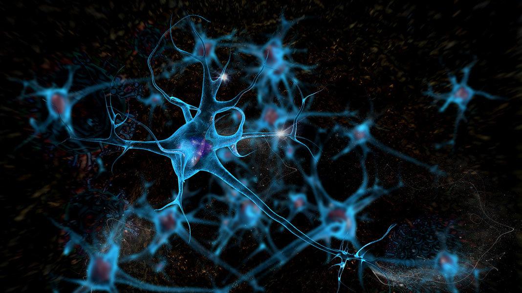 brain cell neurons 3D illustration