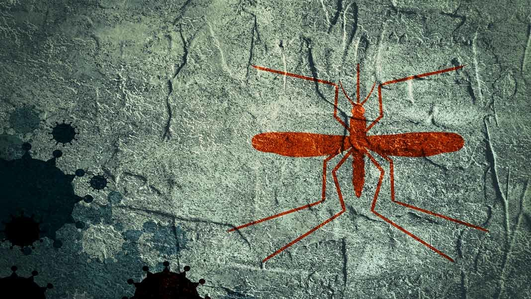 mosquito shape on textured background