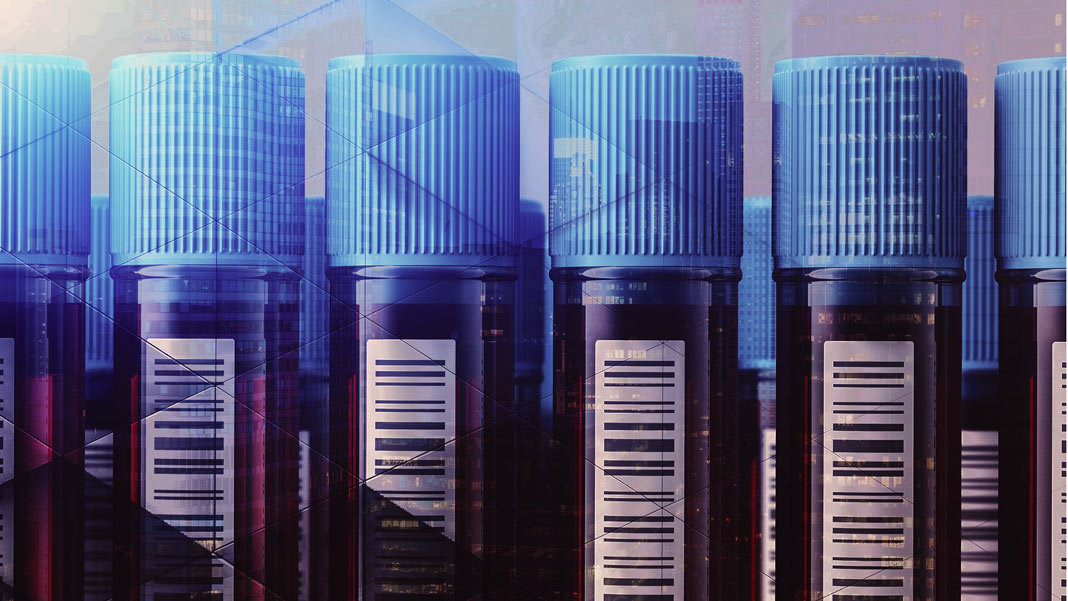 vertical test tubes of blood