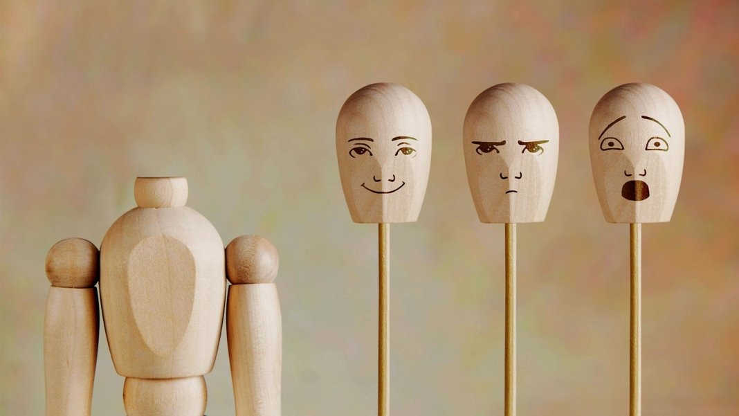 various human emotions wood model