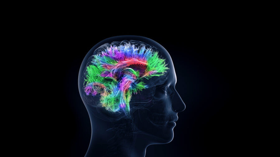 How Does Social Interaction Change Our Brains? Hyperscans Can Show Us 2
