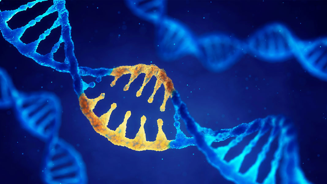 double helix dna modified genes crispr
