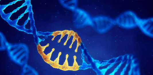 double helix dna modified genes crispr crisproff