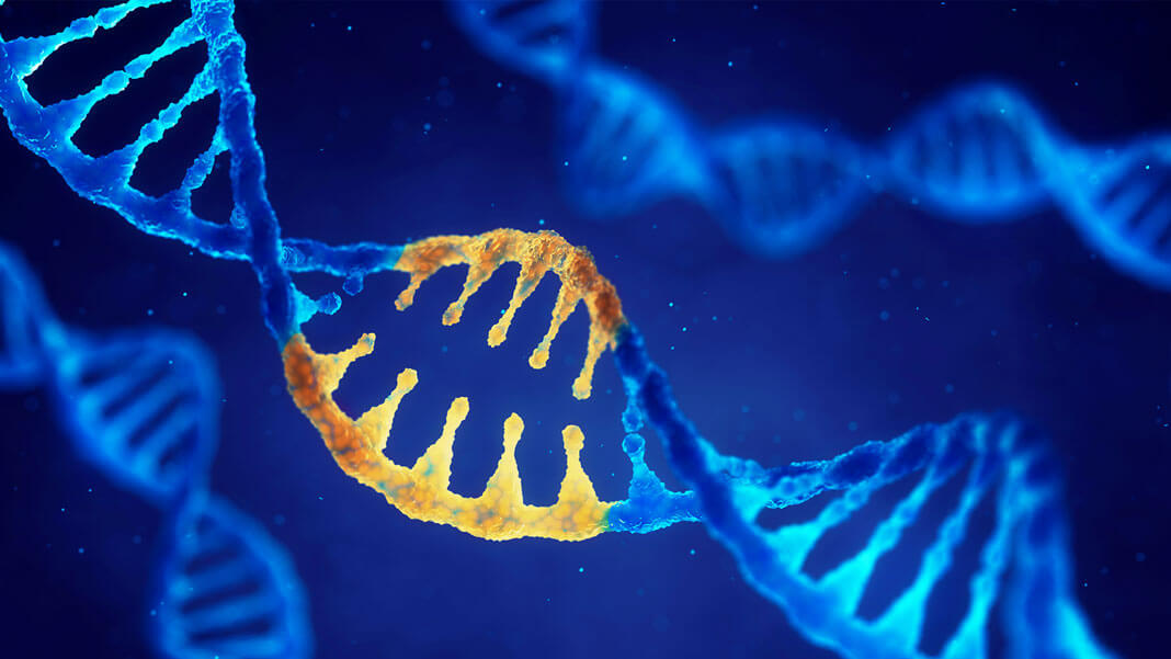Russia Could Take the Lead on Human Gene Editing